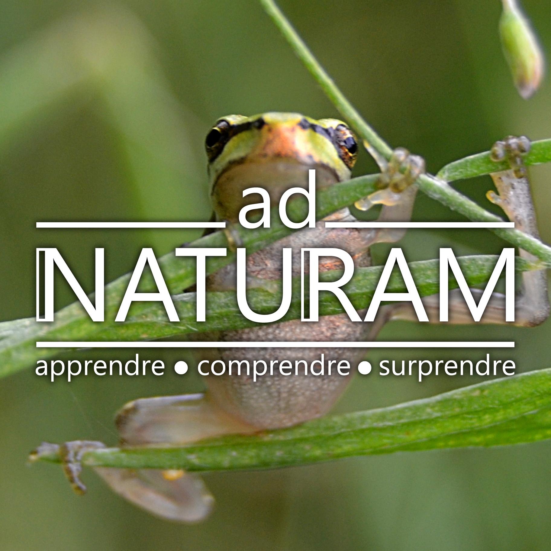 Ad Naturam